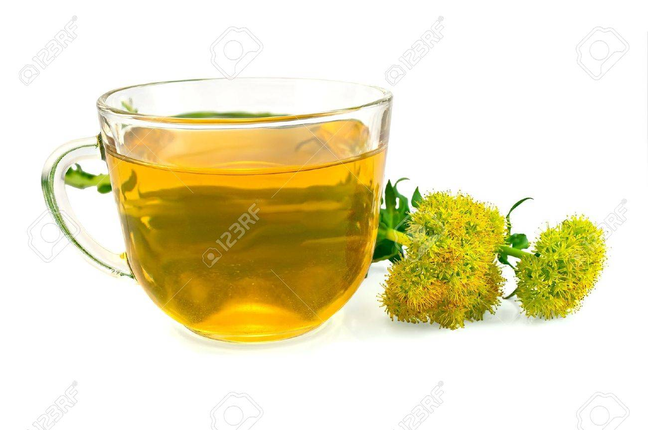 Healing herbal tea in a glass bowl with flowers Rhodiola rosea is isolated on a white background Stock Photo - 12745938