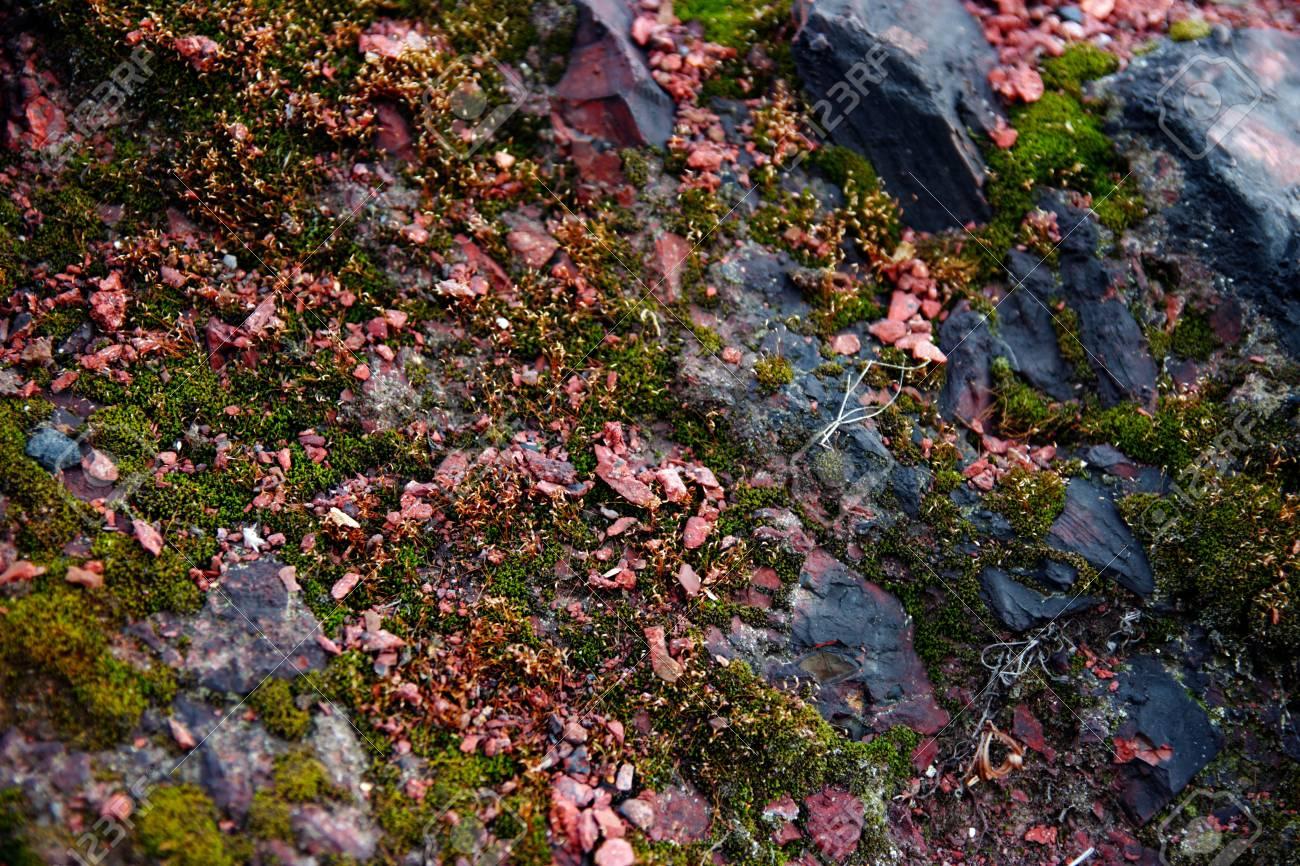 Red stones, rocks sunset light terikon Stock Photo - 15623550