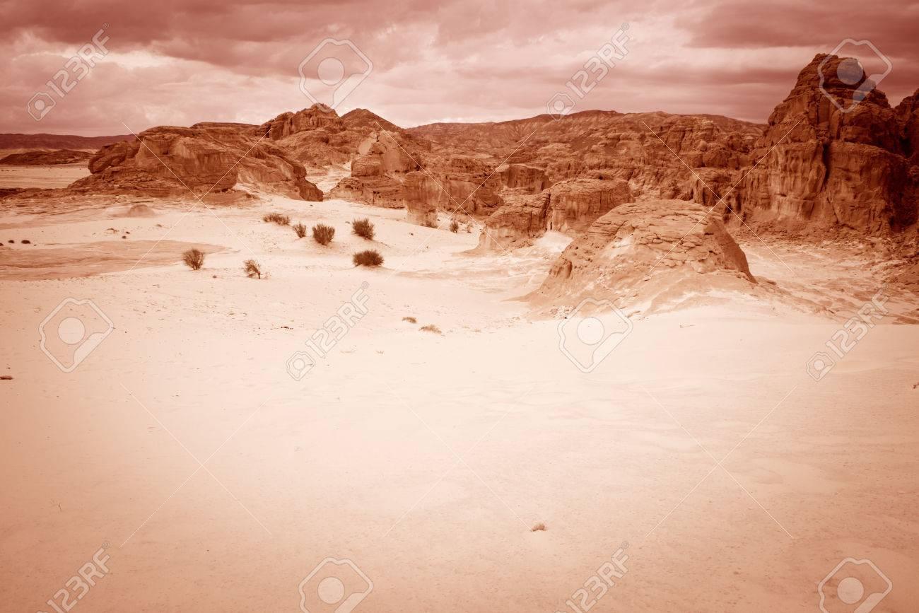 Paysage Concept desert fond de paysage concept de réchauffement global du sinaï, en