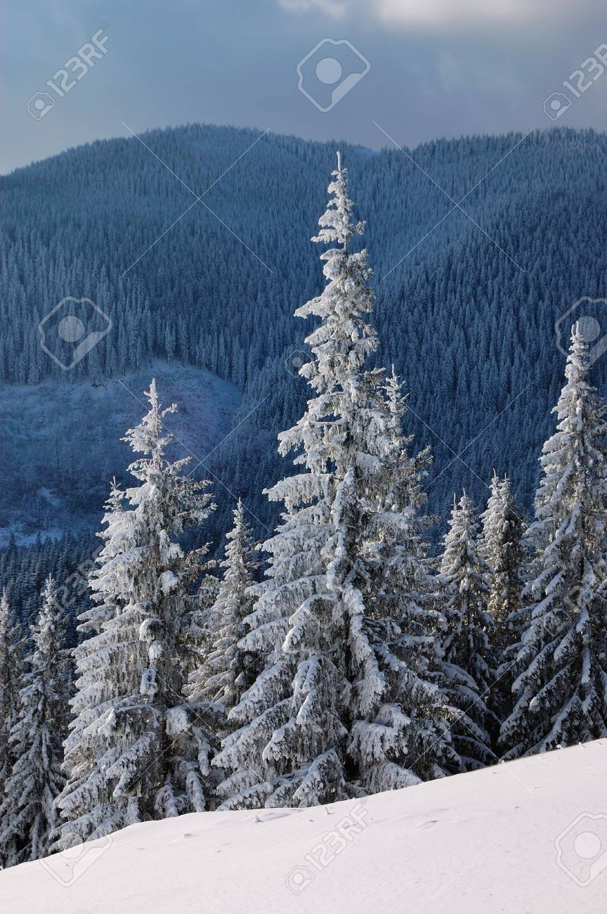 Winter landscape in mountains Carpathians, Ukraine and a valley with huts Stock Photo - 8071575
