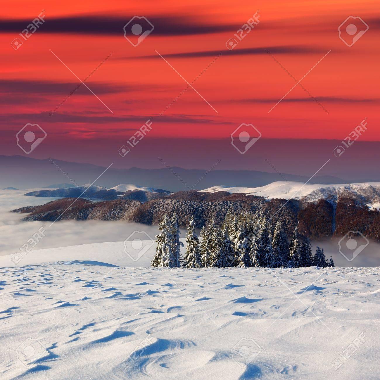 Winter landscape on a sunset. Mountains Carpathians, Ukraine Stock Photo - 11158452