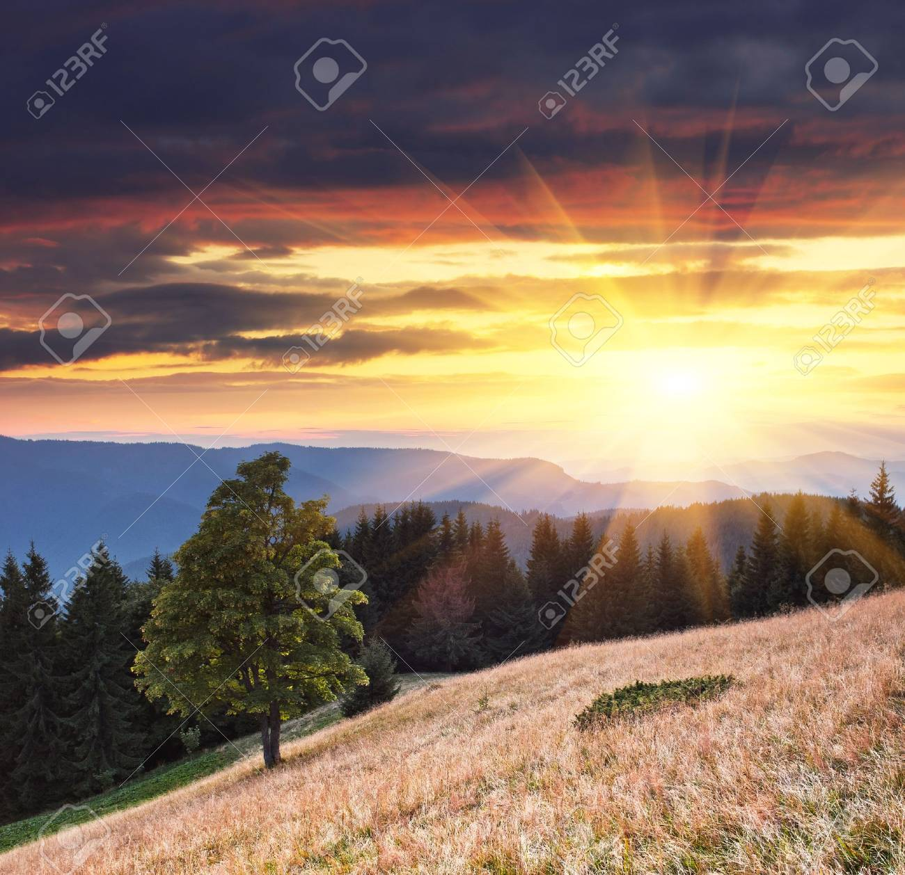 Landscape in the mountains with a sunset. Ukraine, the Carpathian mountains Stock Photo - 12209523