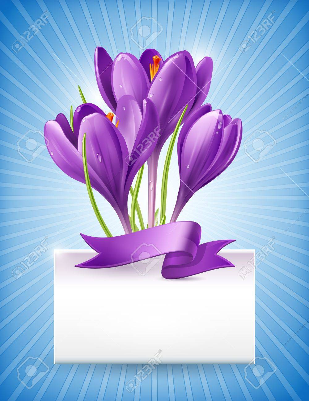 Vector illustration  Bouquet of spring flowers of crocuses Stock Vector - 18143363