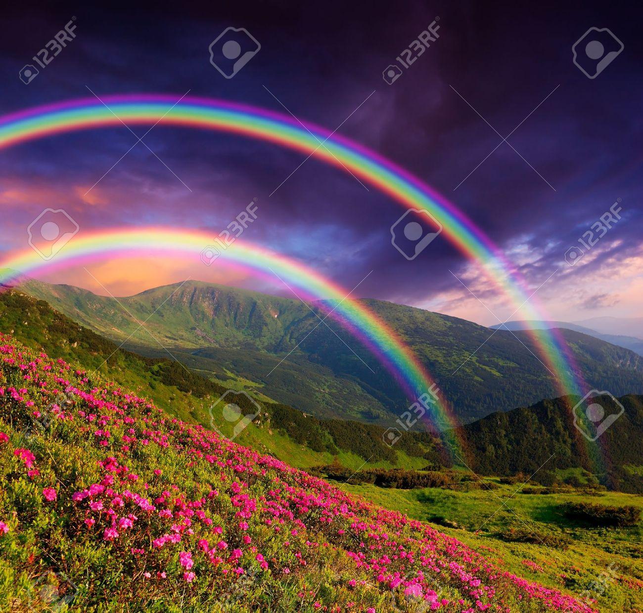 Paysage de montagne avec un arc en ciel sur les fleurs Banque d'images - 18670913