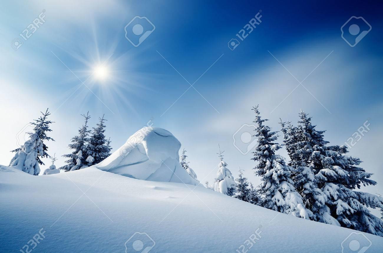 Paysage d'hiver sur une journée ensoleillée dans une forêt de montagne Ukraine, Carpates Banque d'images - 22597796