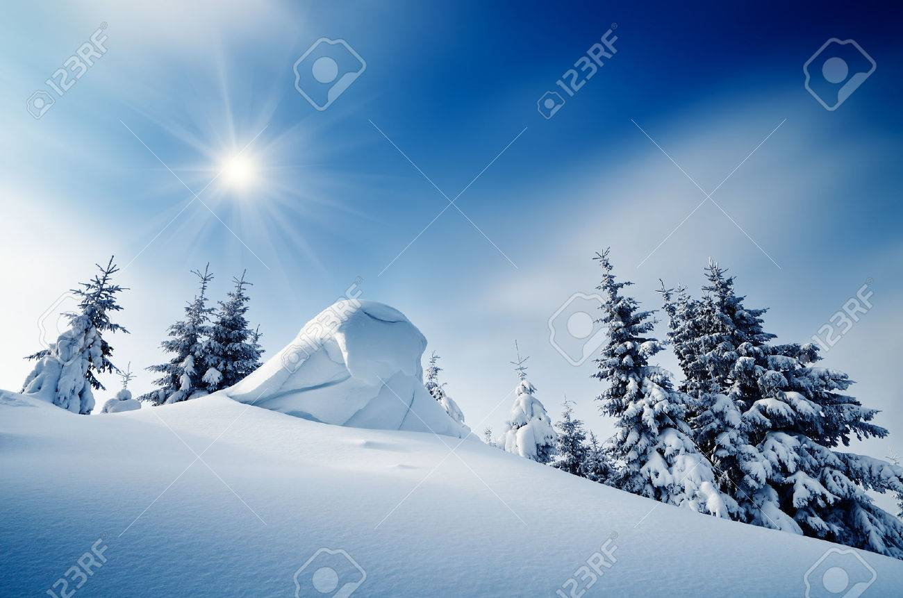 Winter landscape on a sunny day in a mountain forest  Ukraine, Carpathian Mountains Stock Photo - 22597796