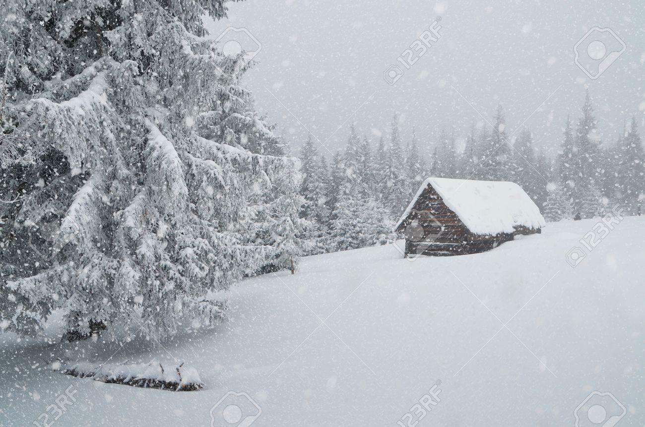 Paysage d'hiver avec de la poudrerie et une cabane dans la forêt Ukraine, Carpates Banque d'images - 22597871
