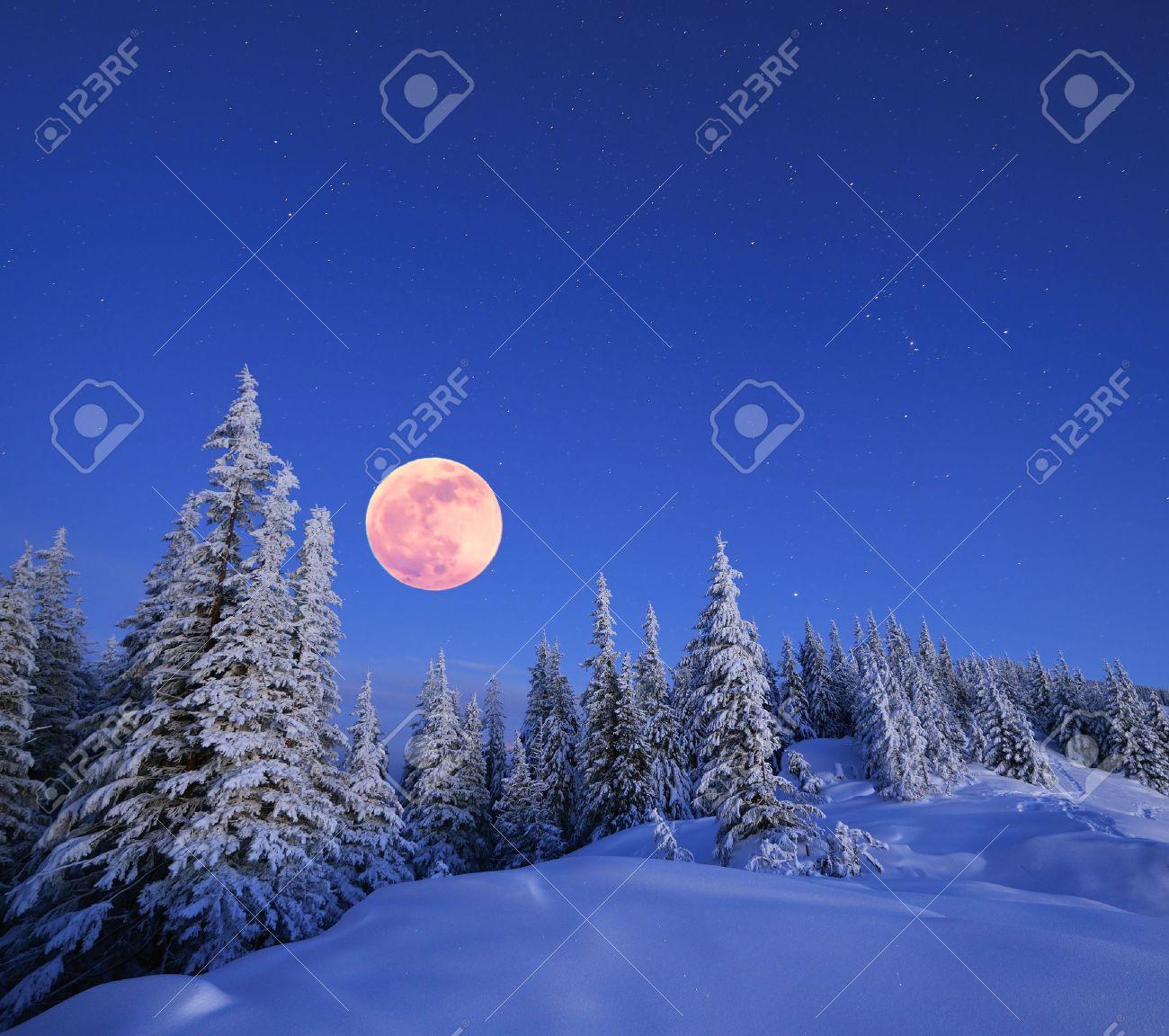 Paysage d'hiver dans les montagnes dans la nuit Une pleine lune et un ciel étoilé Carpates, Ukraine Banque d'images - 22603630