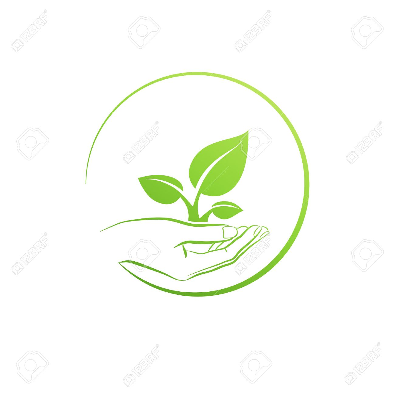 Hand holding plant, icon growth concept vector illustration - 36175132