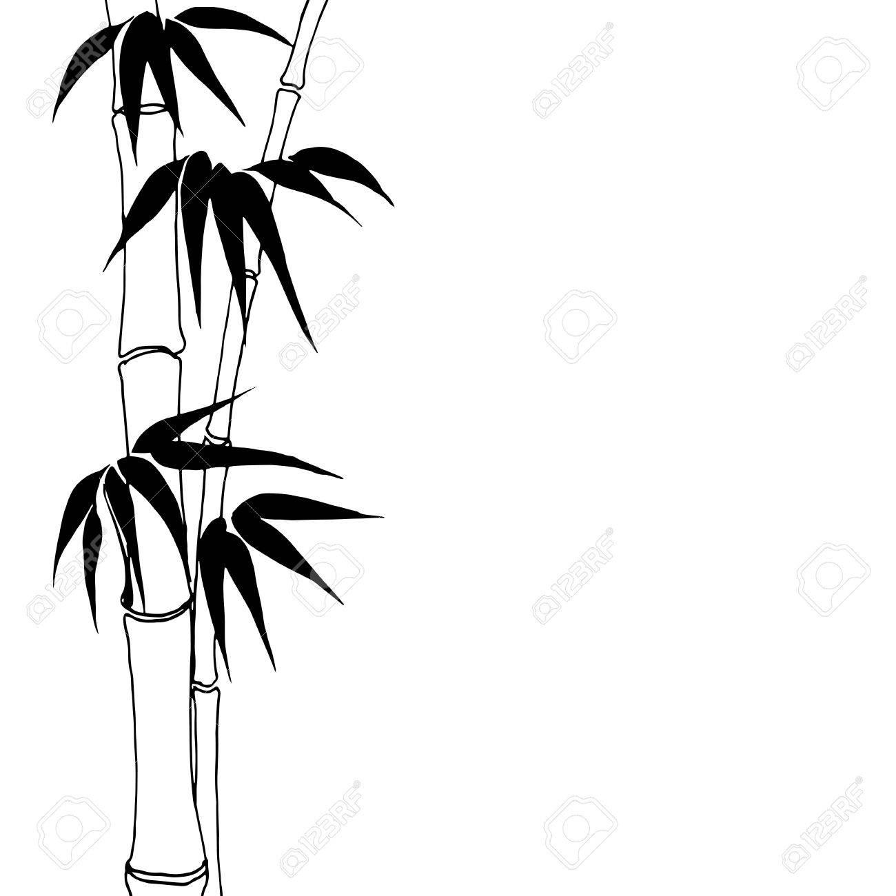 Bamboo Bamboo Tree