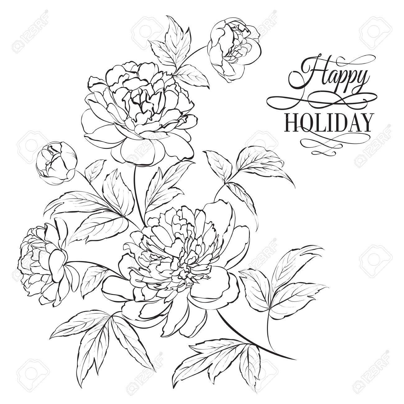 Beautiful hand drawn illustration of peony on a white background Stock Vector - 30478698