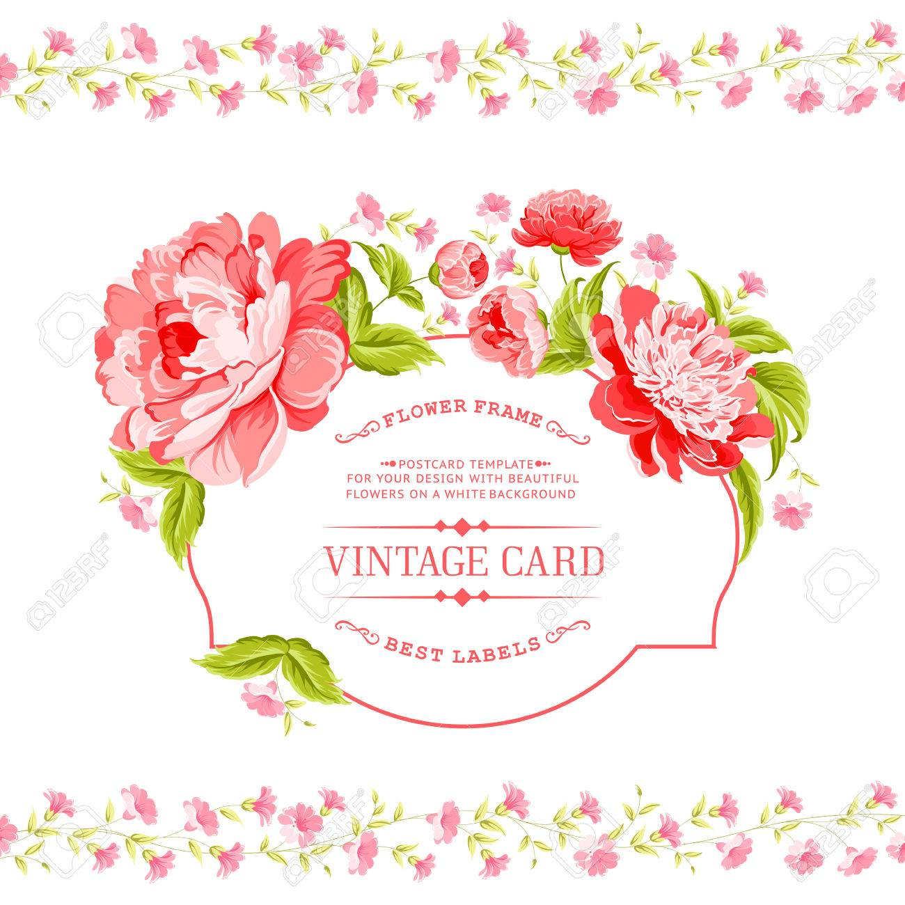 Luxurious invitation card of color peony flowers vector luxurious invitation card of color peony flowers vector illustration stock vector 30796177 stopboris Image collections