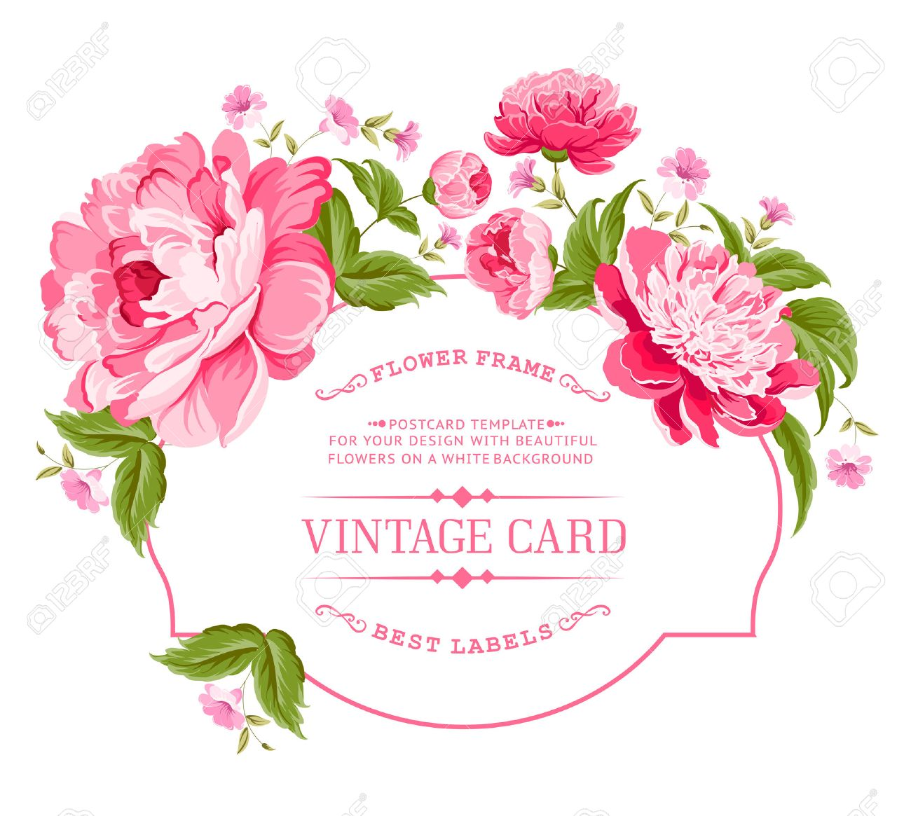 Luxurious invitation card of color peony flowers vector illustration imagens luxurious invitation card of color peony flowers vector illustration stopboris Image collections