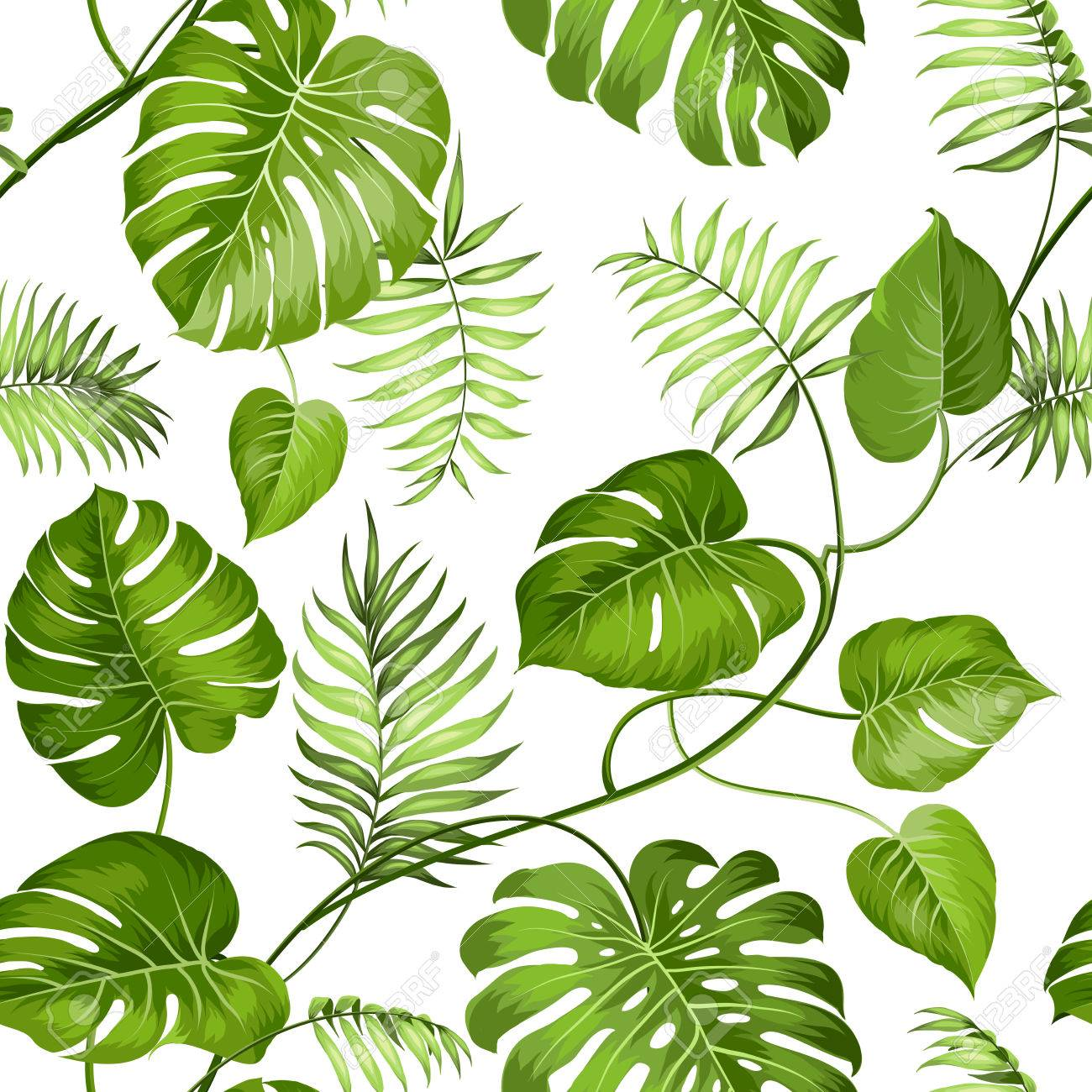 Tropical Leaves Design For Fabric Swatch Vector Illustration Royalty Free Cliparts Vectors And Stock Illustration Image 40798596 .jungle leaves, tropical leaves pattern, palm tree, tropical forest tropical leaves design, free vector about (4,827 files) free vector in ai, eps, cdr, svg vector illustration graphic art design format. tropical leaves design for fabric swatch vector illustration