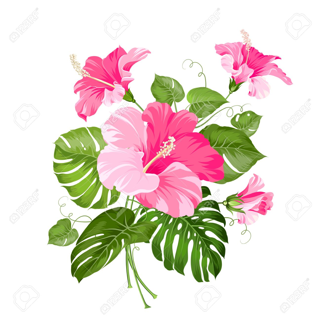Tropical flower garland isolated over white background vector tropical flower garland isolated over white background vector illustration stock vector 41696943 izmirmasajfo
