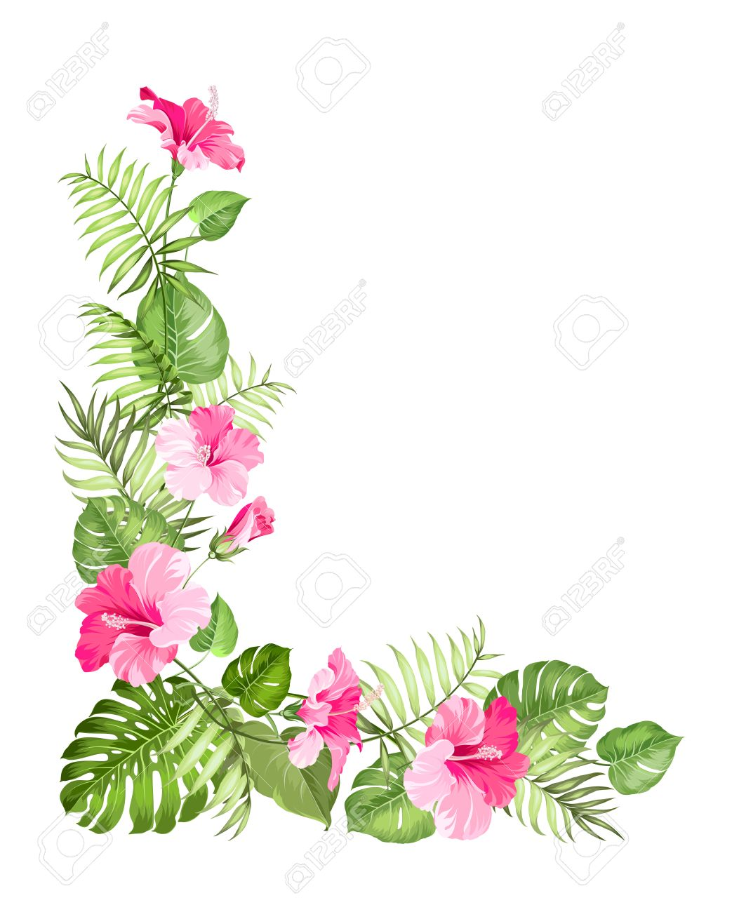 tropical flower garland isolated over white background. vector