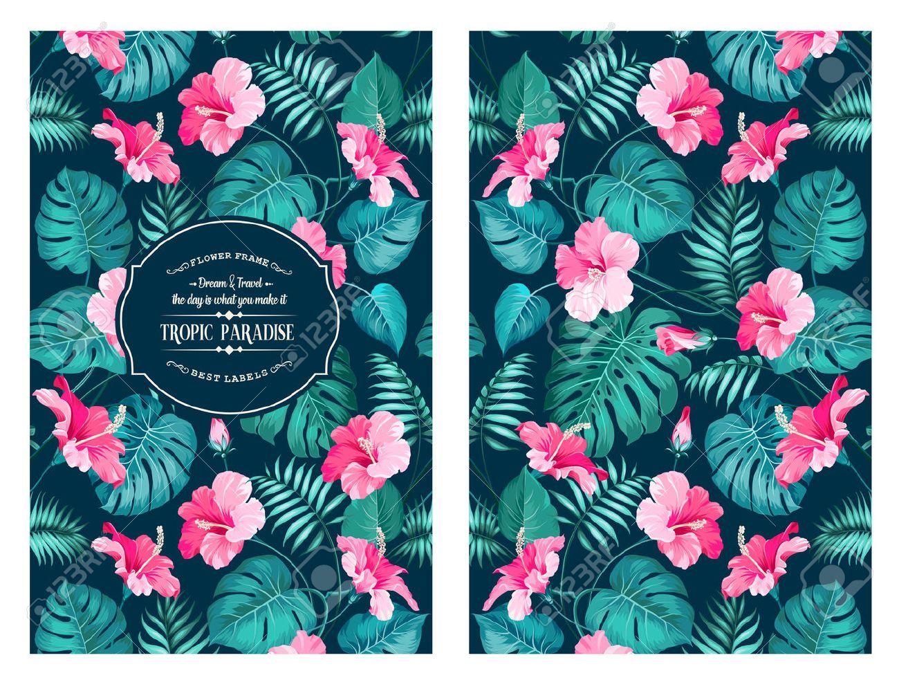 Patr n de flores tropicales en el dise o de la portada del libro flor de las