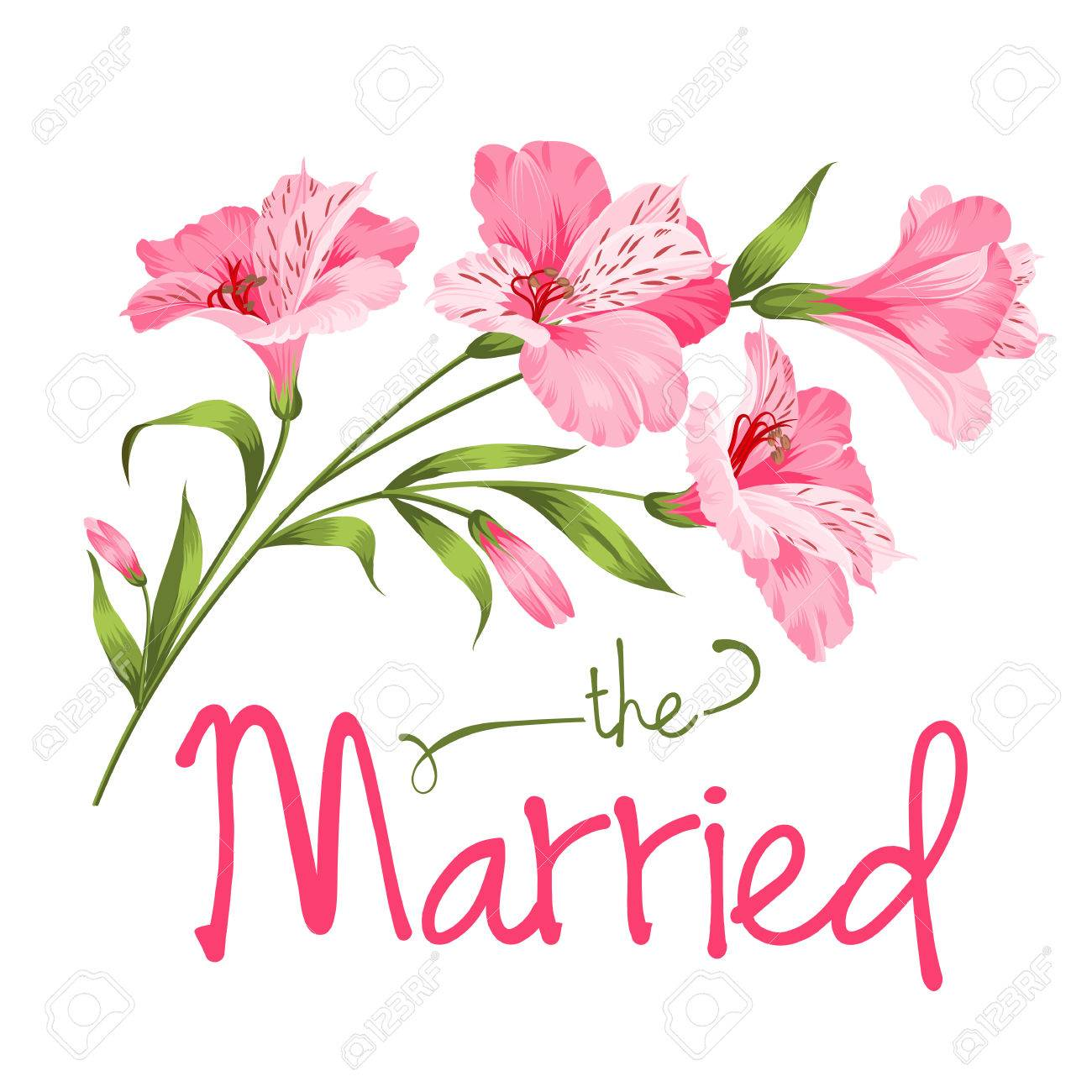The married card. Wedding card template. Alstromeria pink branch isolated on white. Wedding invitation card with pink flowers. Vector illustration. - 47041293