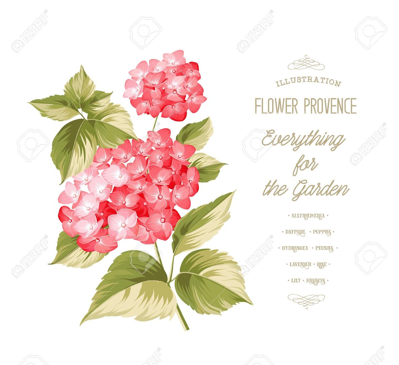 Uas Flores Top Affordable Fabulous Interesting Cool Decoracin De