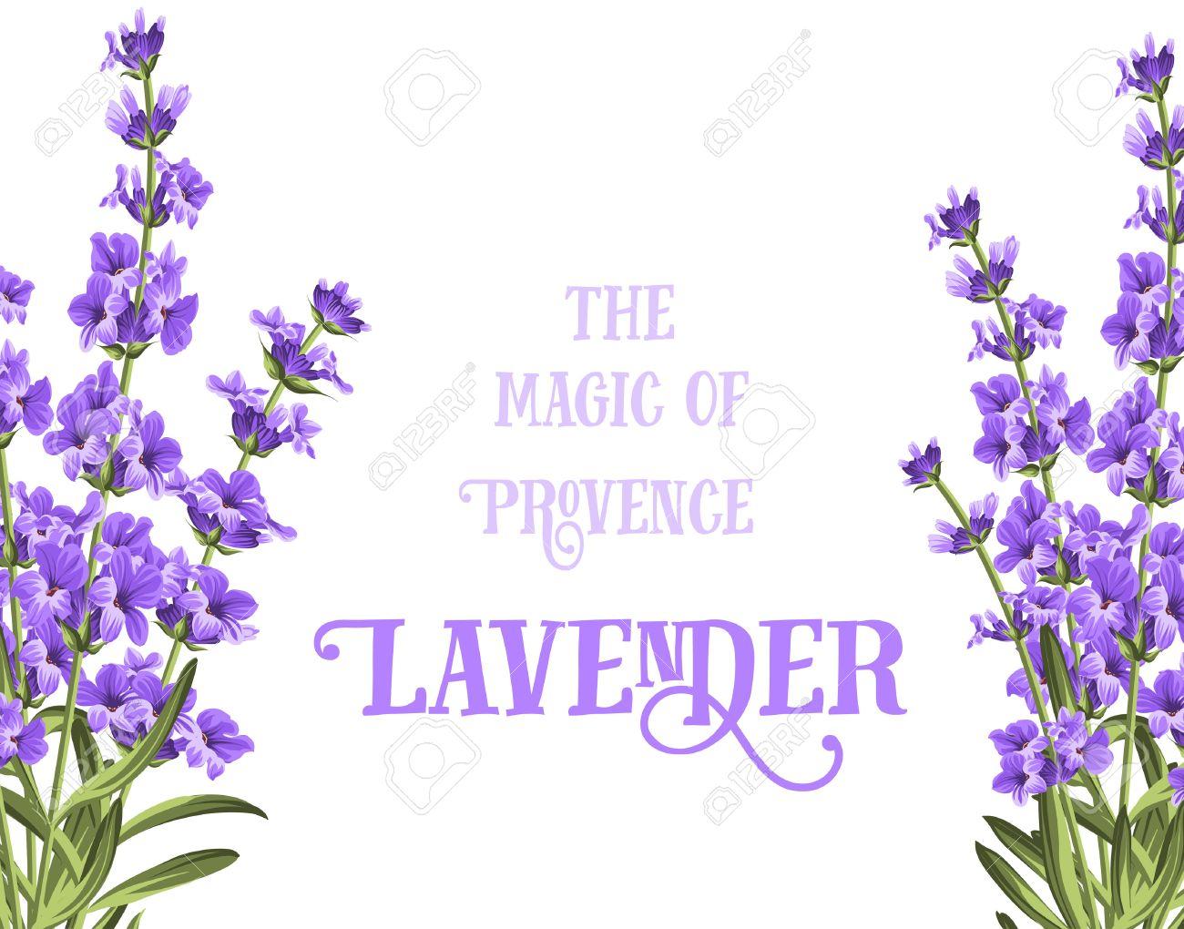 fleur lavande La carte élégante de lavande avec cadre de fleurs et de  texte.