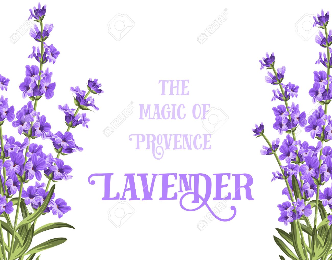 Erfreut Lavendel Bilderrahmen Fotos - Benutzerdefinierte ...