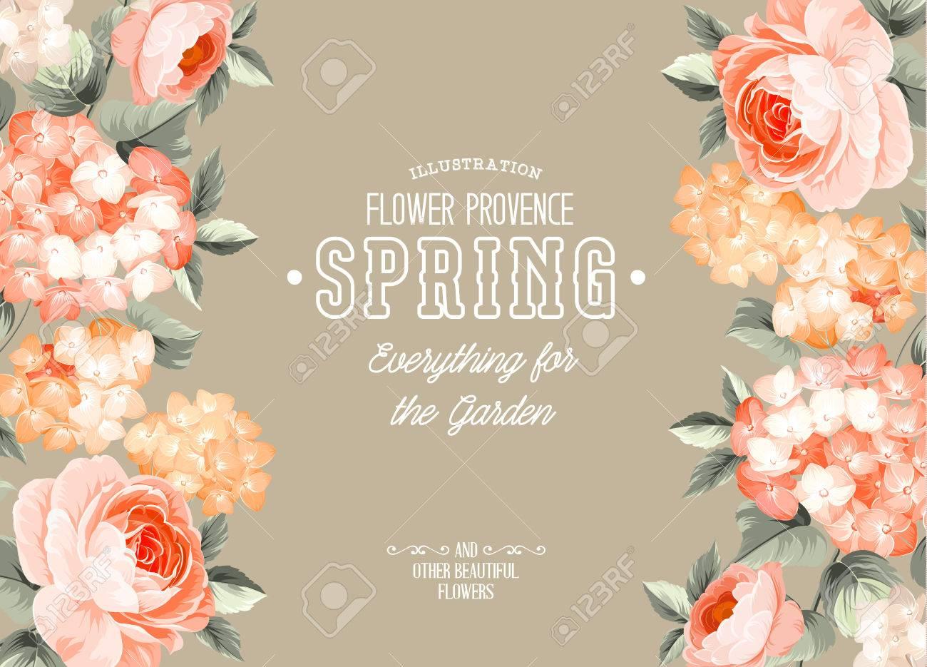 Illustration Der Provence Blume Alles Fur Garten Und Andere Schone