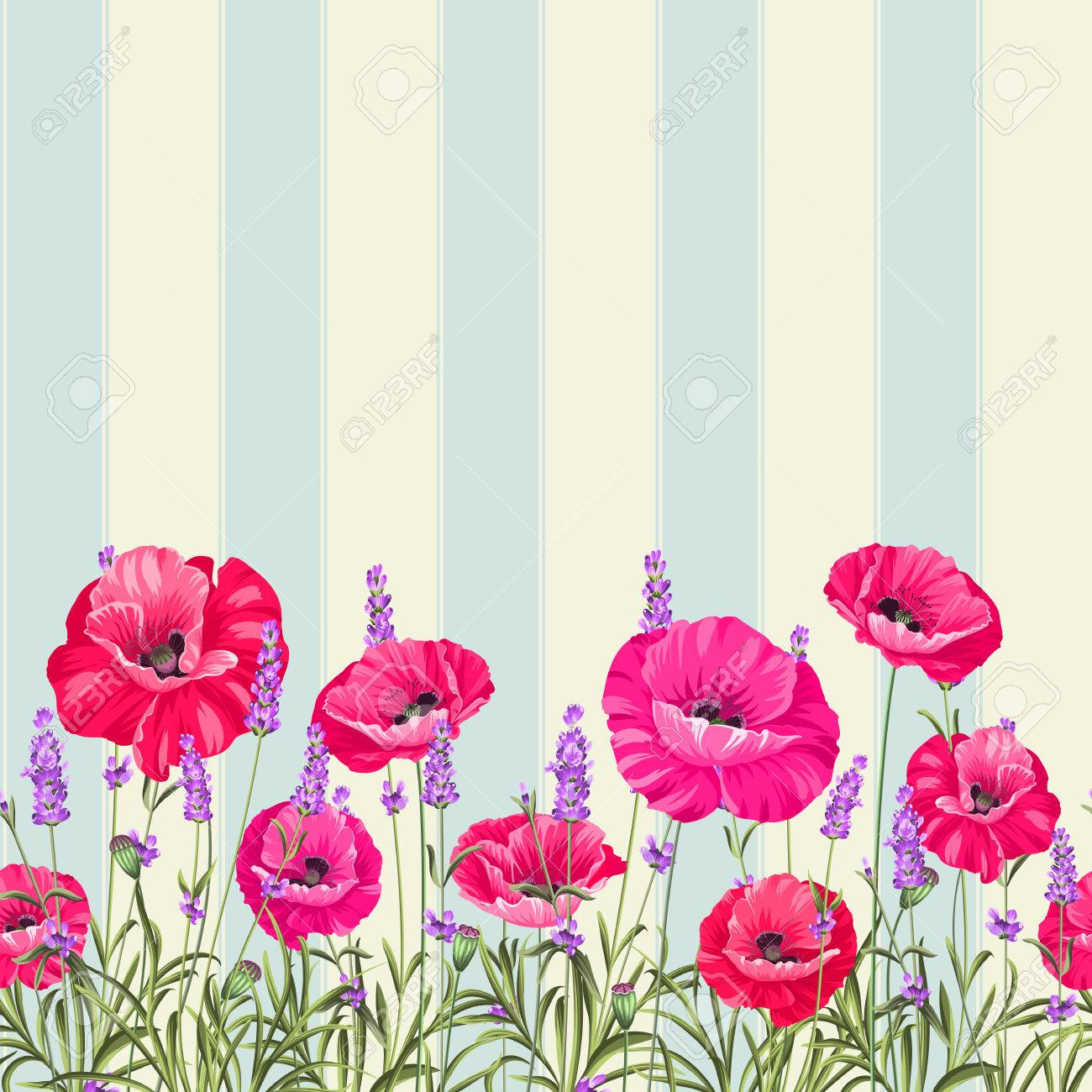 Pattern Of Poppy Flowers Over White Background Luxurious Color