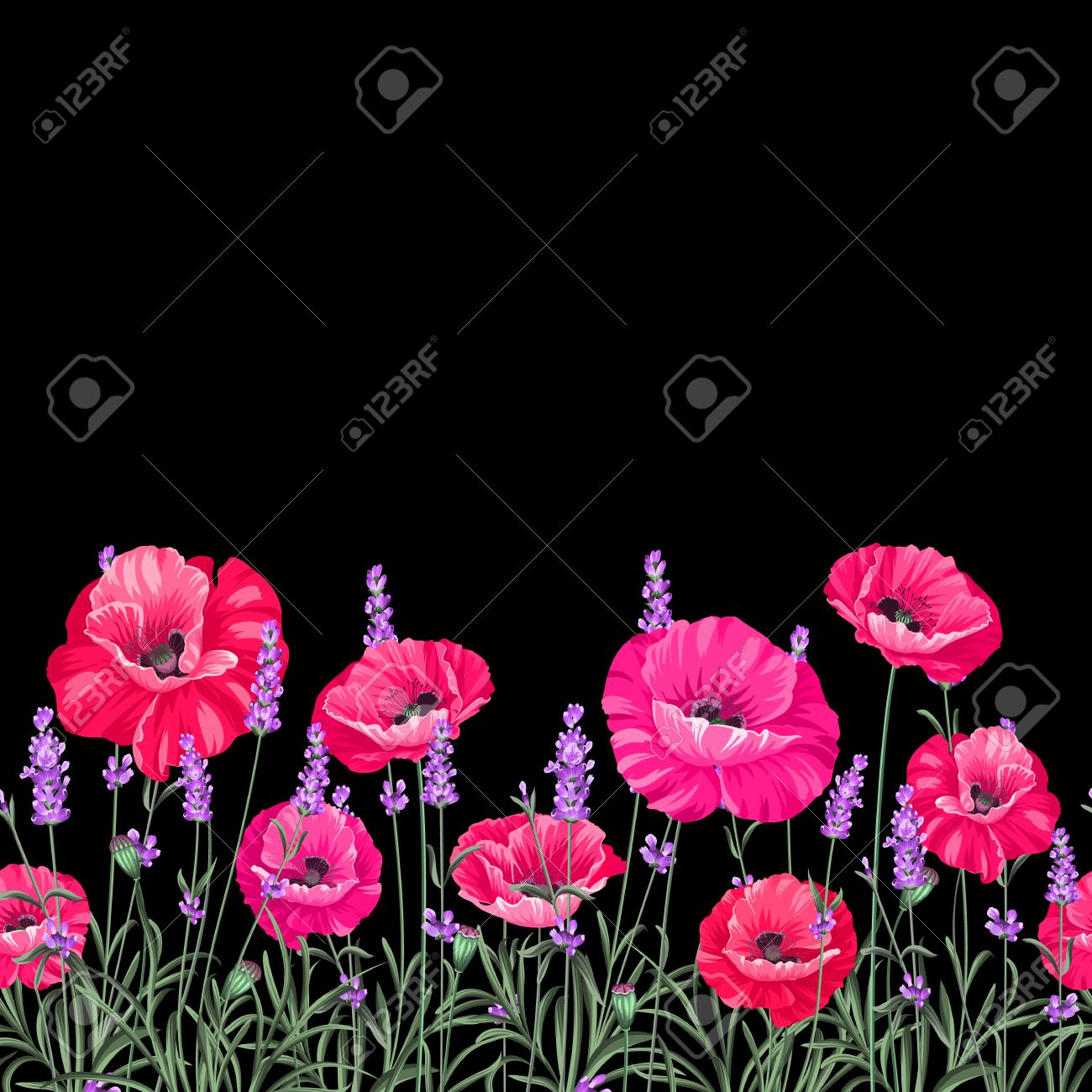 Pattern of poppy flowers over black background. Luxurious color poppy flowers. Textile for a vintage label design. Vector illustration. - 54294363