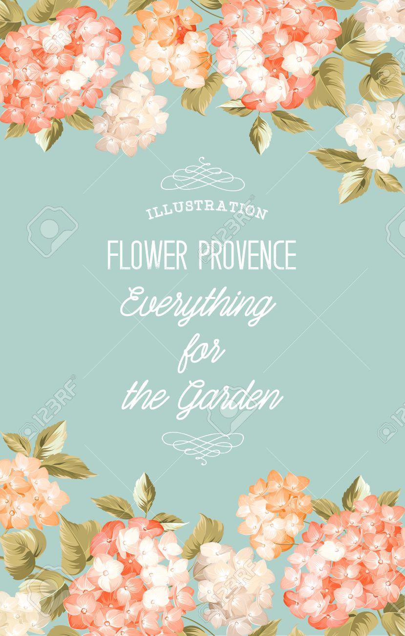 Hermosa Flor Morada De Hortensias. Invitación De Boda Y El Anuncio ...