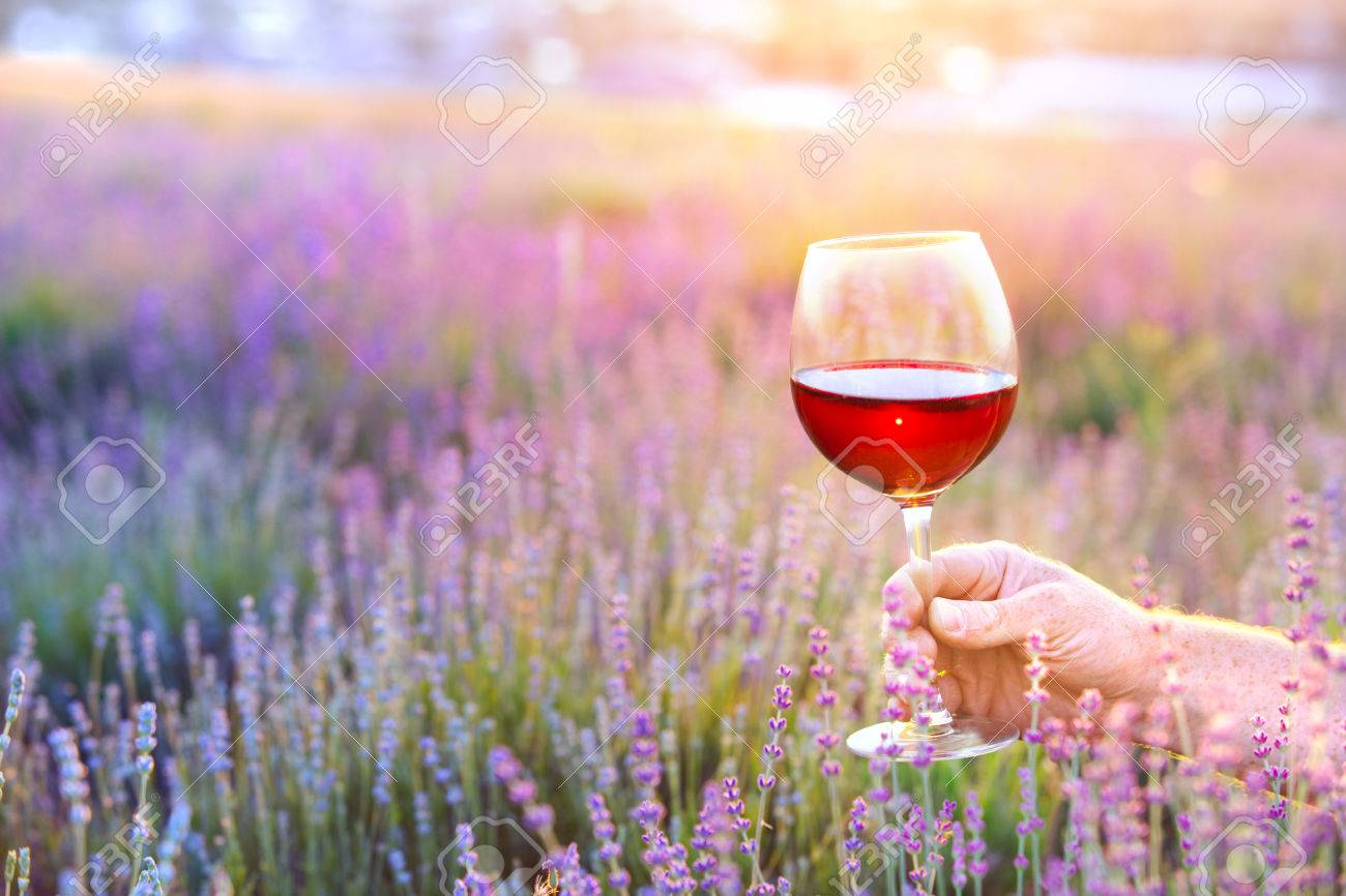 Close up hand holding a glass. Man holding glass of red wine in front of lavender field. Picnic on the field of spring flowers. - 58788689
