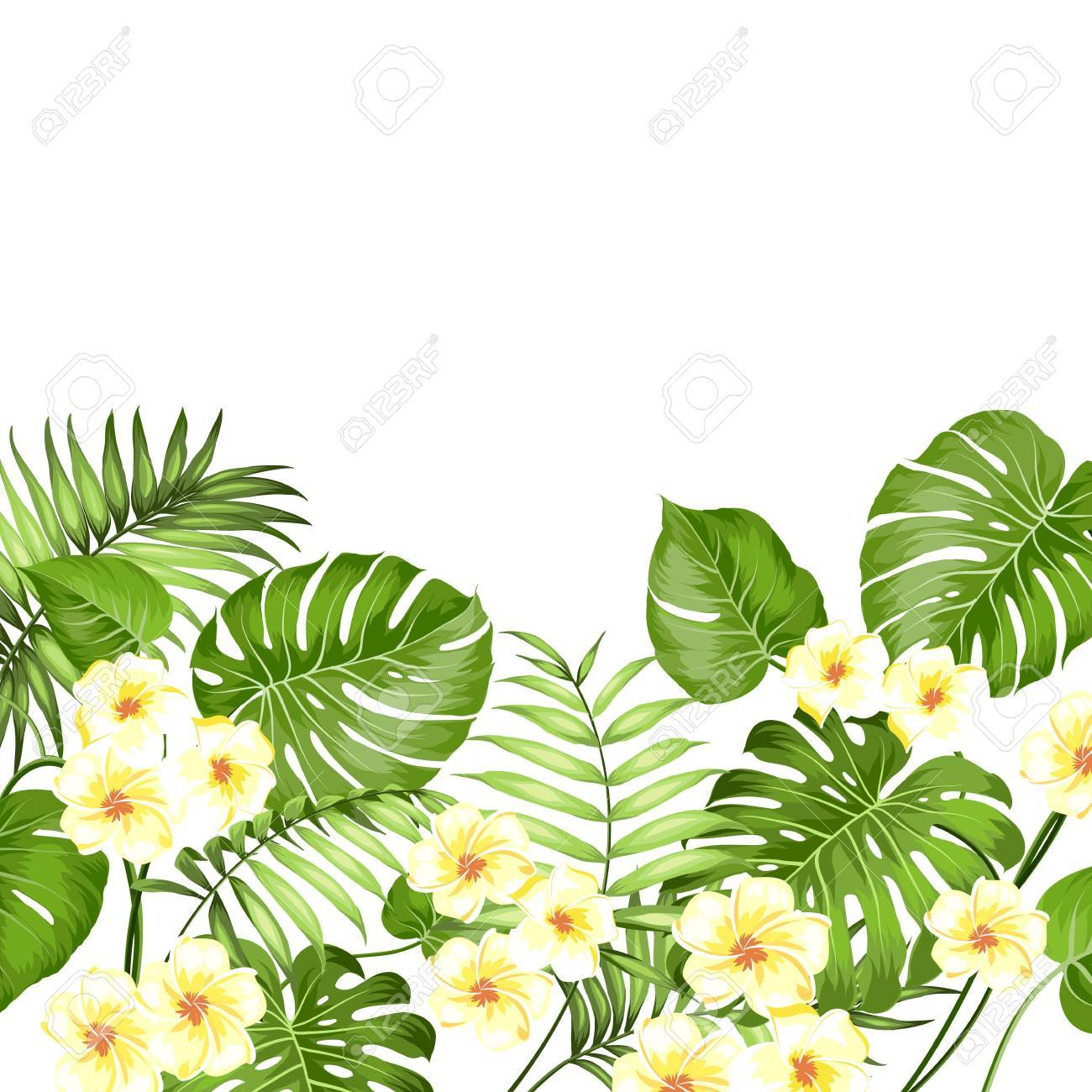 decorative tropical border horizontal line in the bottom happy holiday card with a floral garland