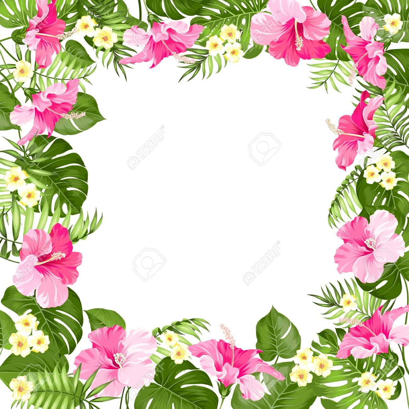 Marco De Flores Tropicales Con Lugar Para Texto De Vacaciones De