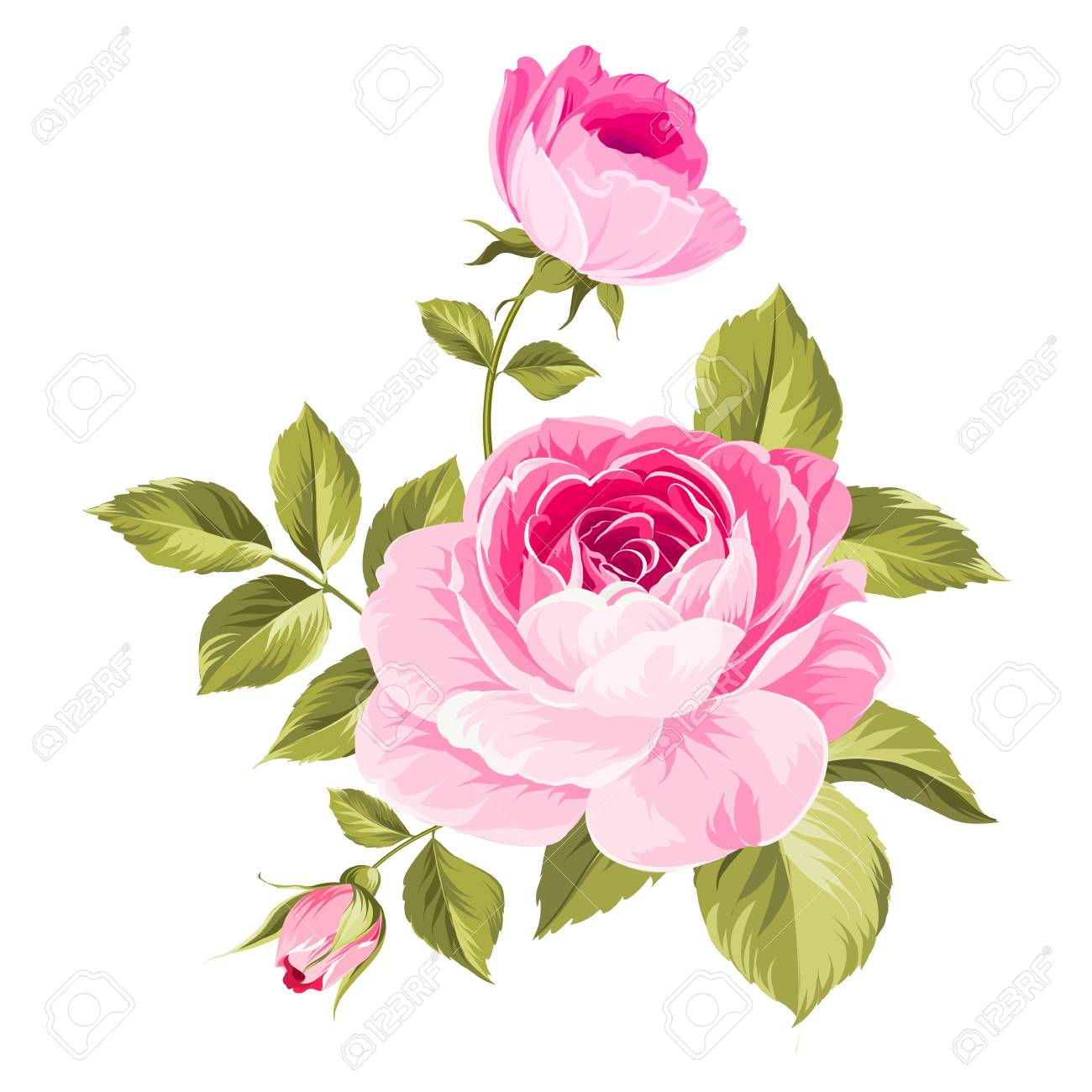 Dessin Fleur Couleur Rose