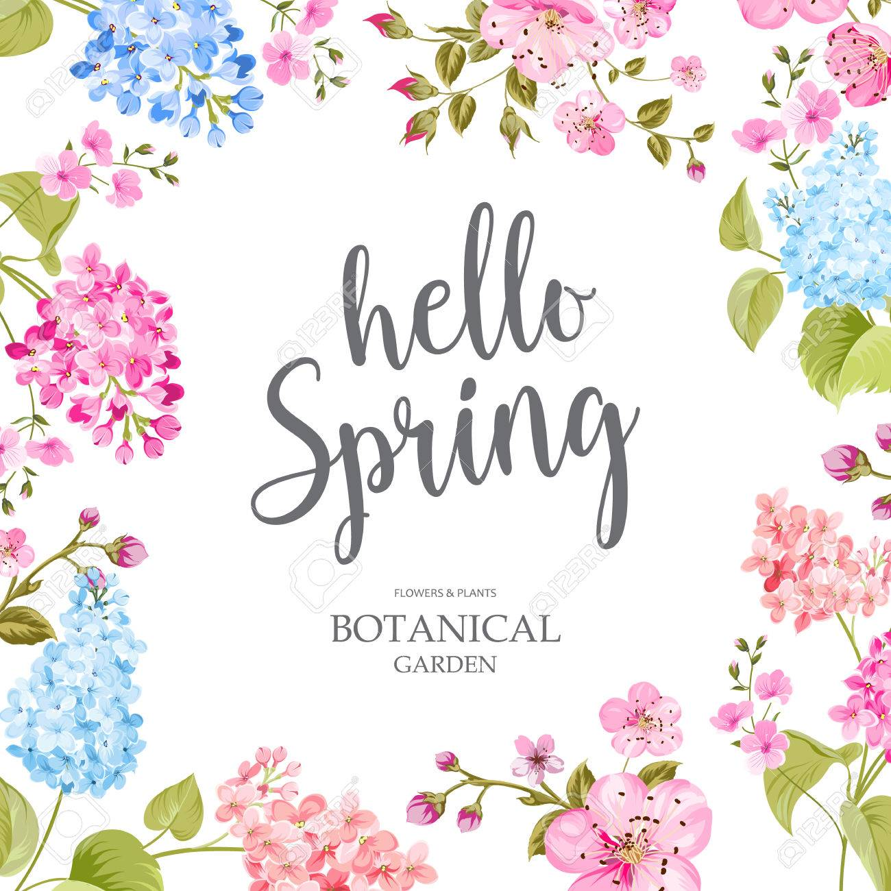 Spring time concept of card with blooming flowers isolated over blue background. Vector illustration. - 71810988