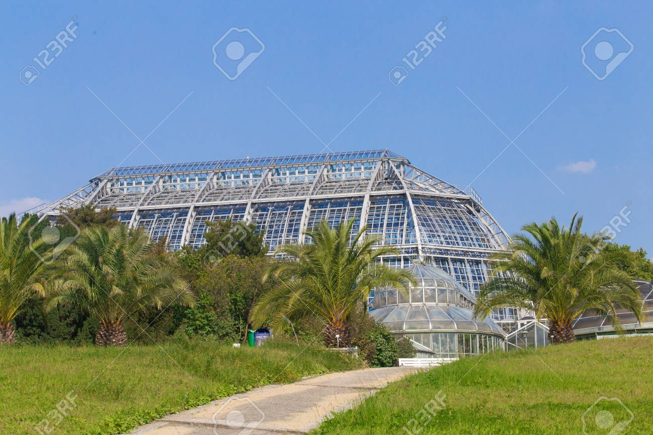 Greenhouse Of Glass With Palms In The Botanical Garden Botanischer