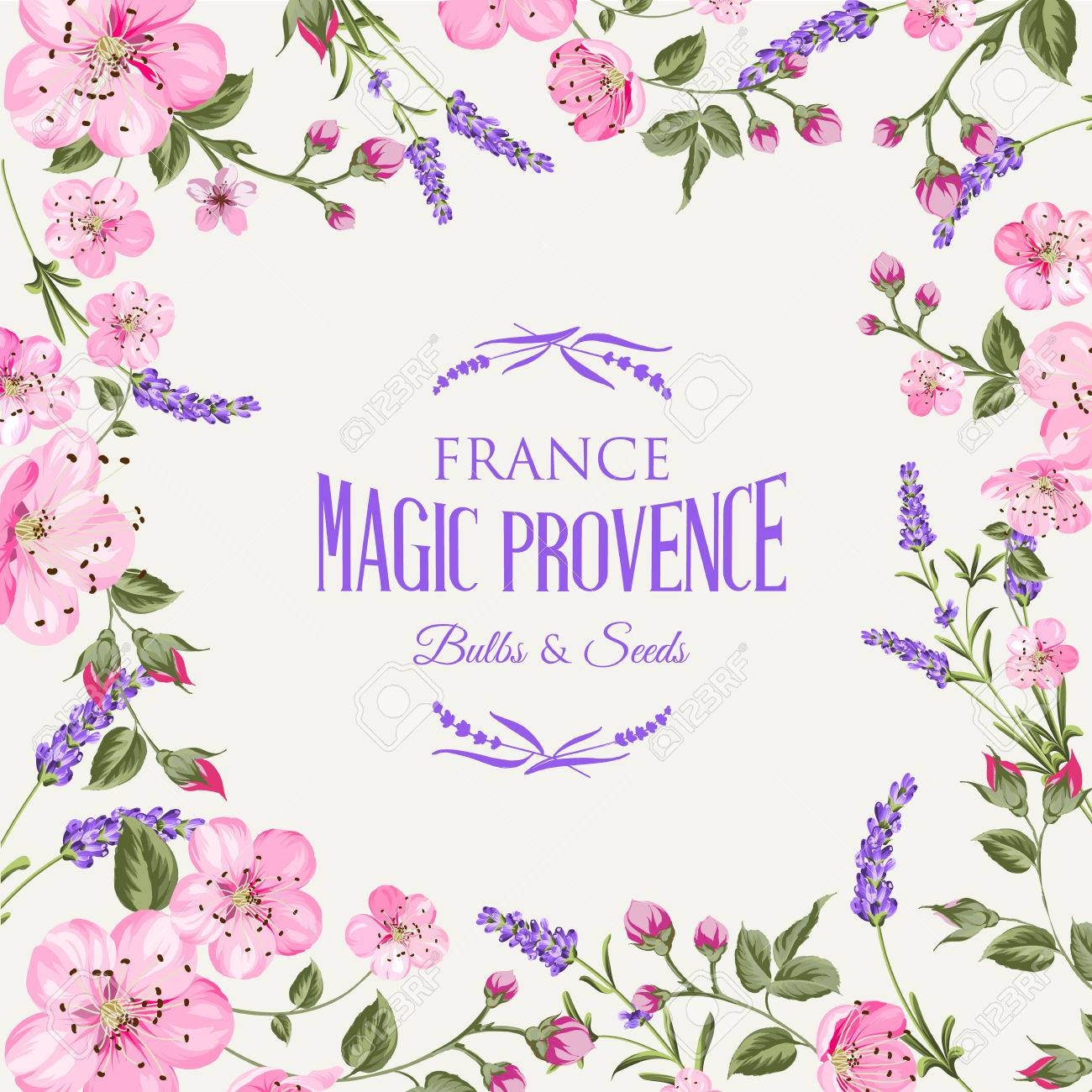 Lavender Provence Memory Card With Frame Of Flowers And Text Flower Garland For Your Text Presentation Sticker With Lavender Flowers Vector