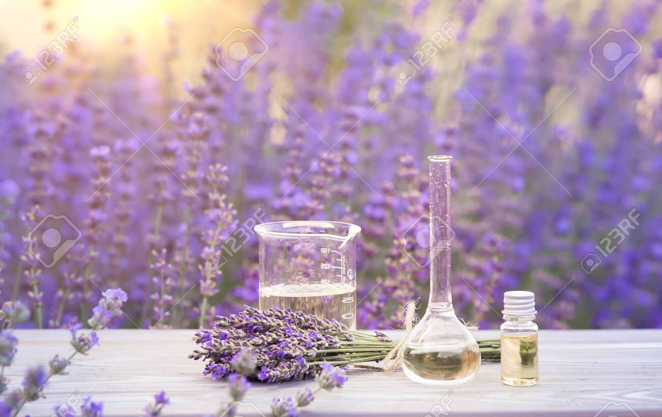 Essential lavender oil in the bottle with dropper on the gray wooden desk. Horizontal close-up. - 134122962