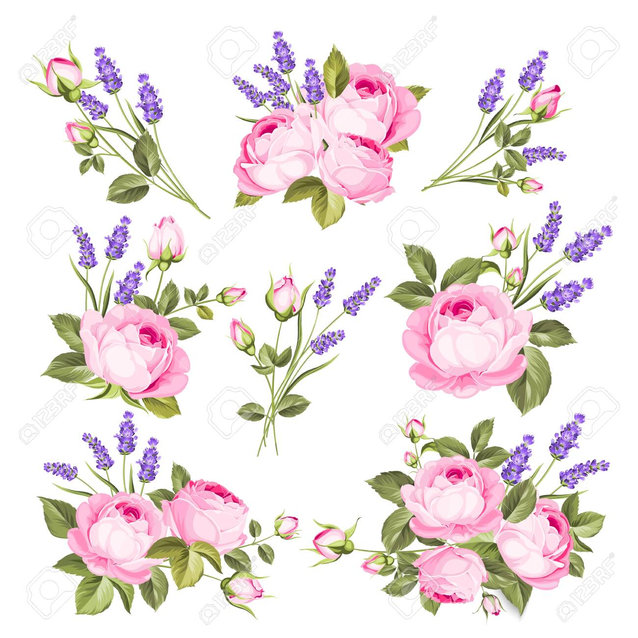 Vector set of blooming flowers. Spring, summer wedding romantic elegant date marriage symbol. Rose and Lavender garland, bouquet for your template, design of invitation card. Vintage illustration. - 139061609