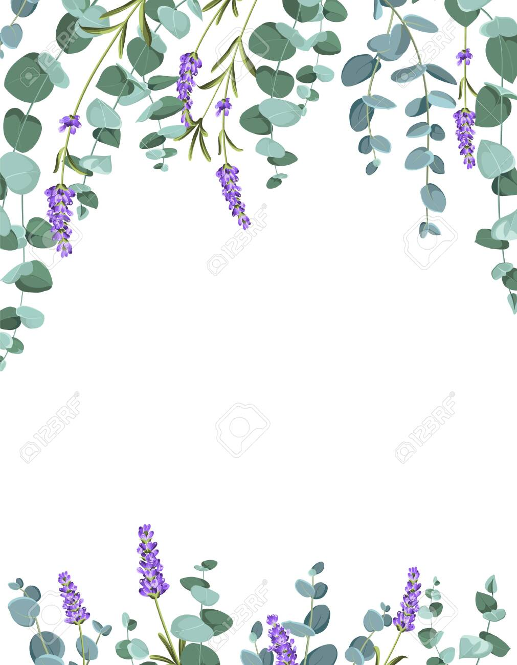 Eucaliptus and lavender elements design template. Simple design with frame flowers. Herbal vector frame. - 150584378