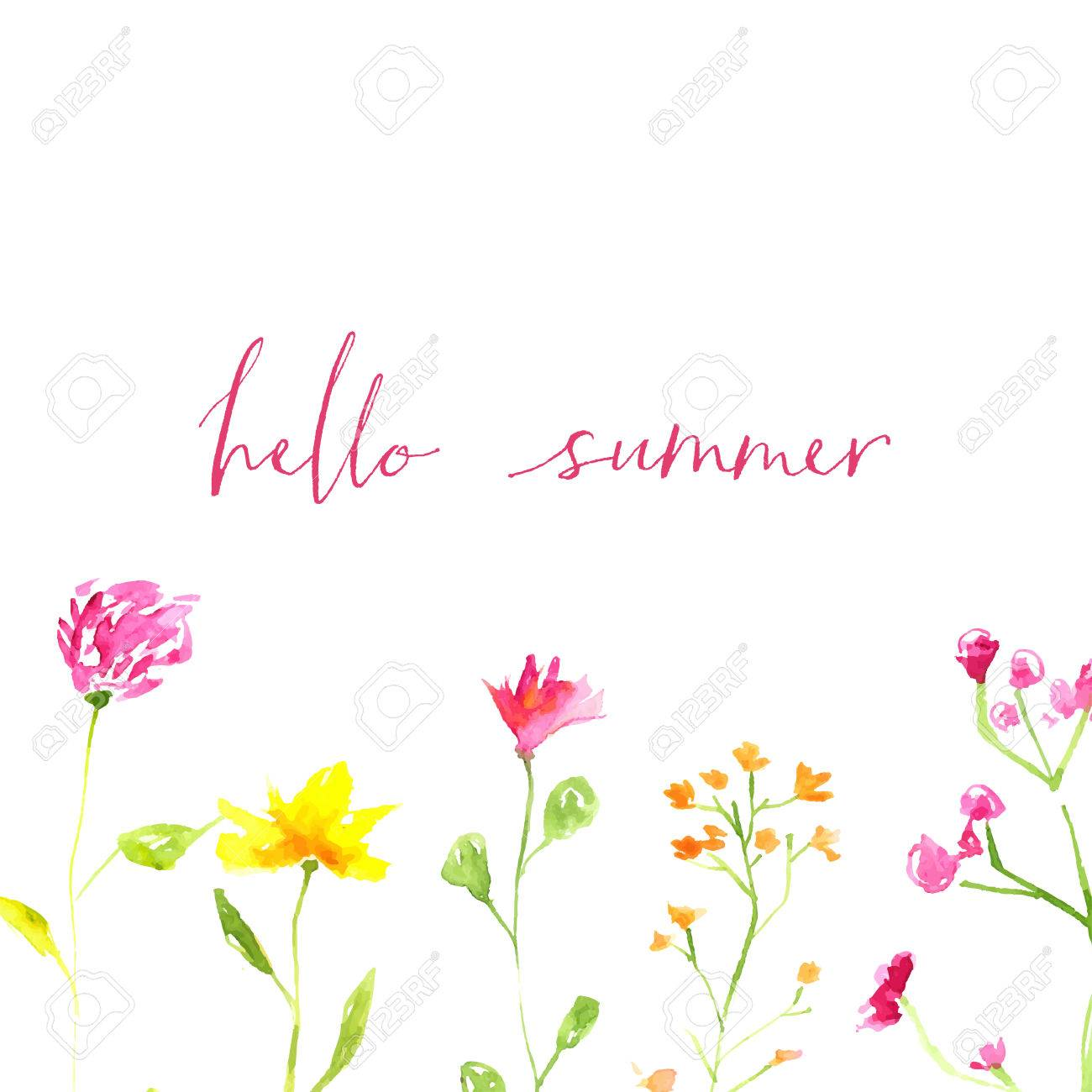 Attirant Hello Summer Text With Hand Painted Watercolor Wild Flowers And Leaves.  Stock Vector   42520874