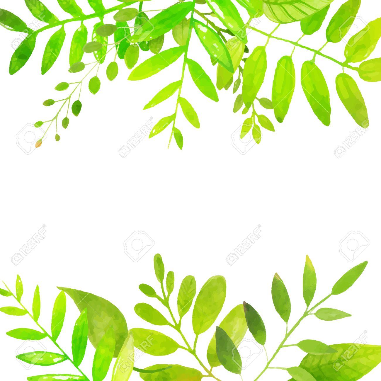 明るい緑色の葉を持つ春フレーム。ベクトルの水彩イラスト。季節的な