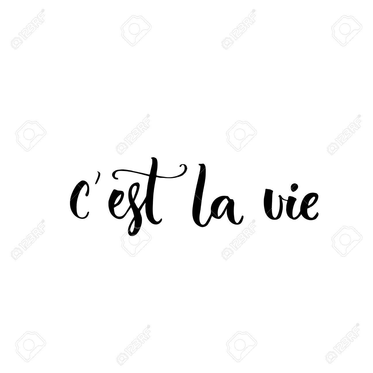 Así Es La Vida Frase En Francés Quiere Decir Que Es La Vida Cita De Las Letras Cepillo Para La Ropa De Moda Y Tarjetas Ilustraciones Vectoriales Clip Art Vectorizado Libre De