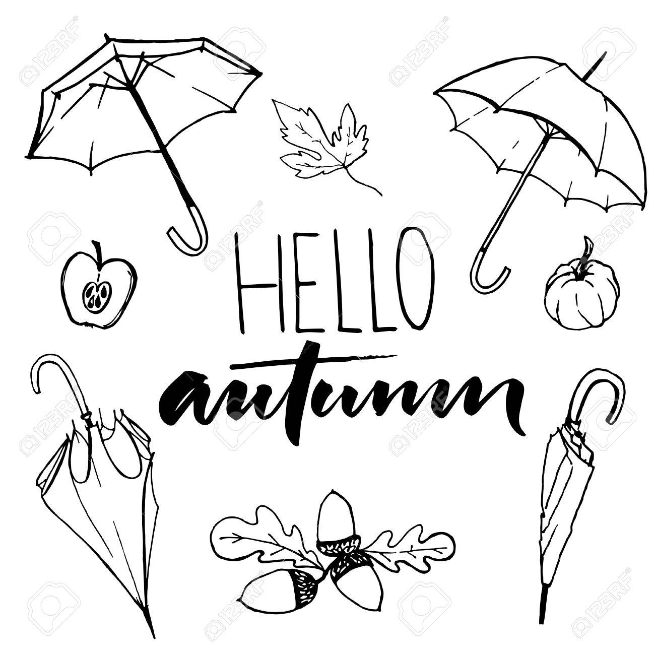 Hello autumn text and sketches of open and closed umbrellas acorns pumpkin and half