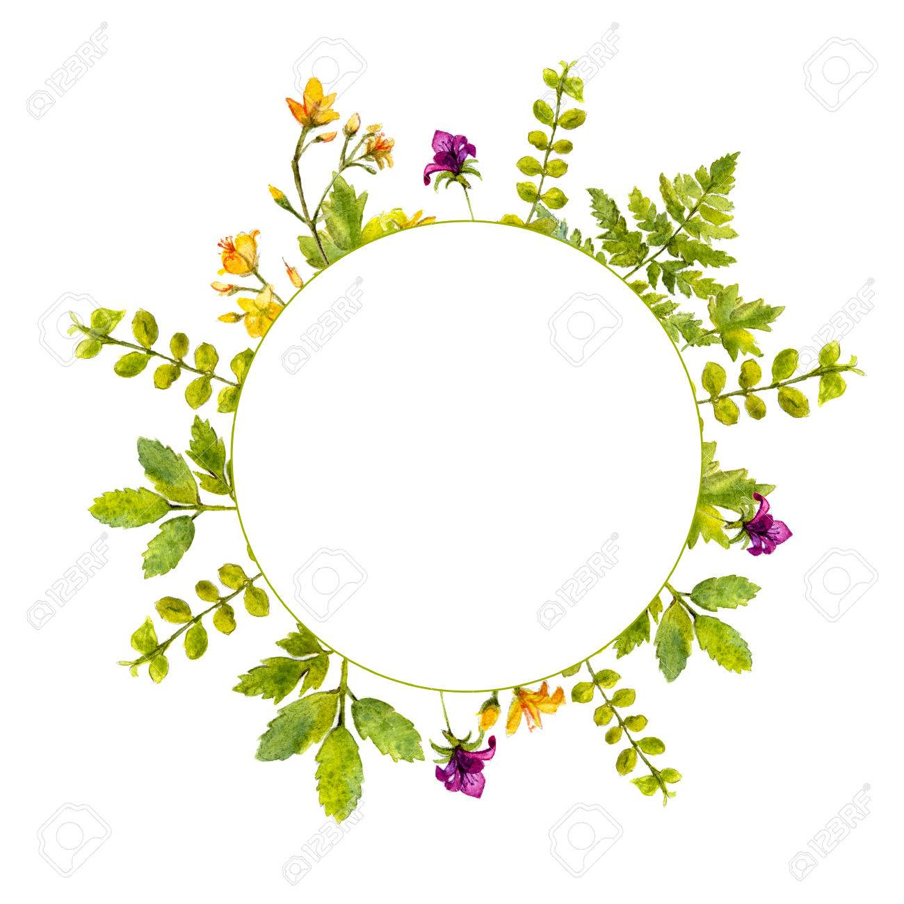 Circle Frame With Painted Watercolor Green Plants And Wild Flowers ...
