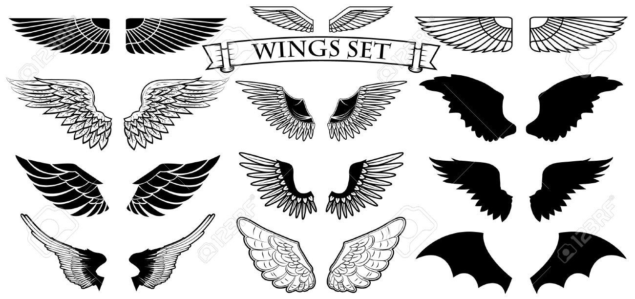 set of the vector wings logo design templation royalty free