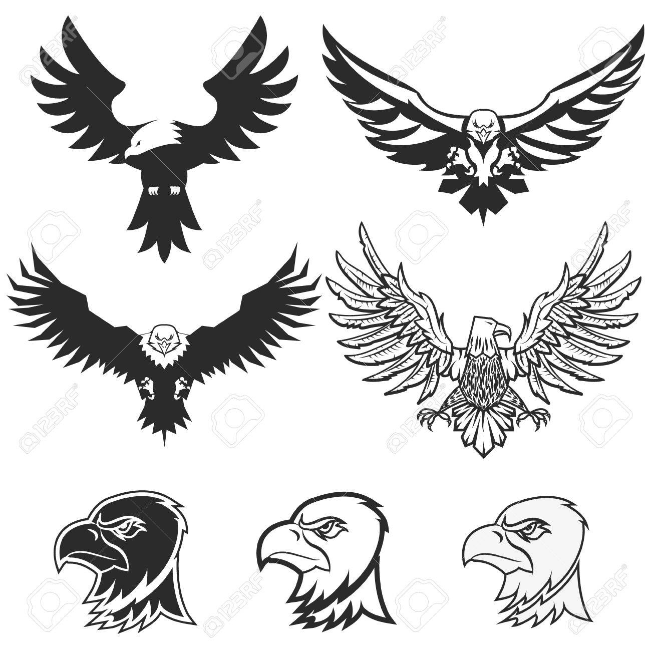 set of eagles design elements label emblem badge template
