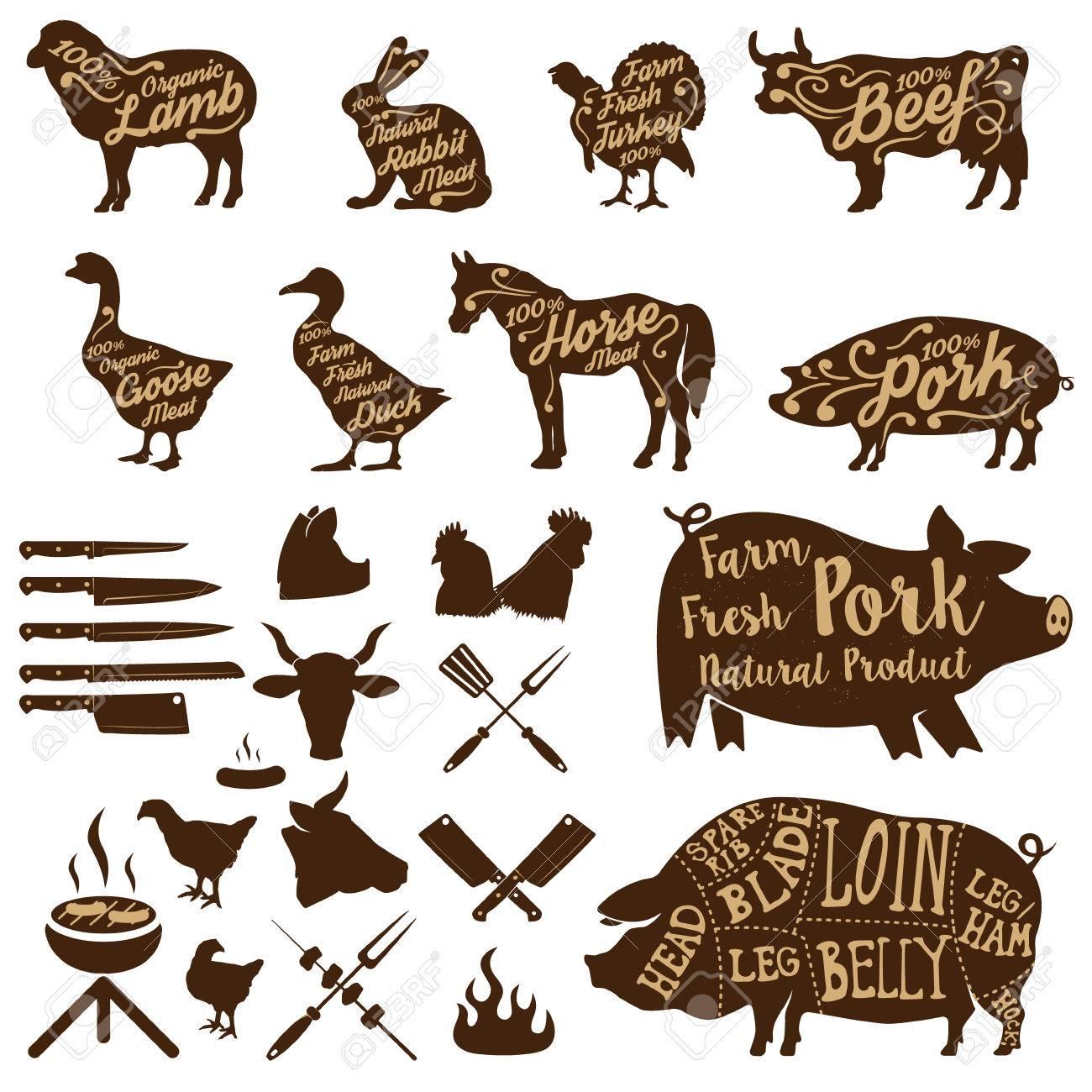 Set of farm animals labels. butcher tools. Fresh pork. Design elements for label, badge. illustrations. - 52546528