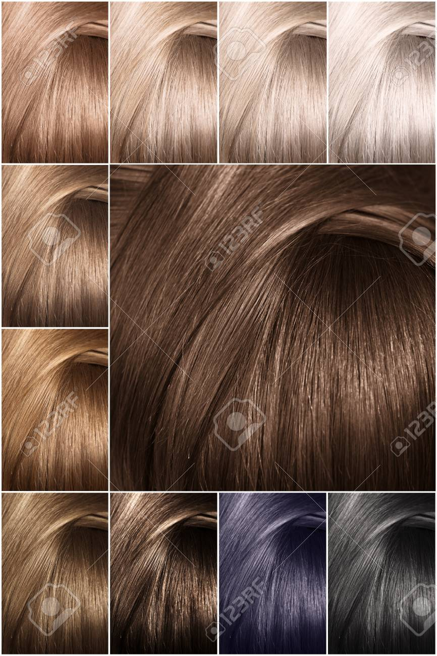 Color chart for tints. Hair color palette with a wide range of..