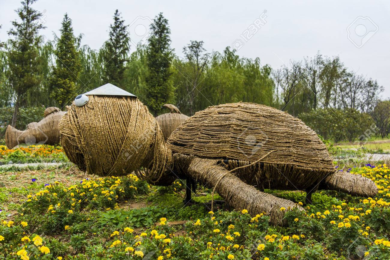 Straw Turtle Stock Photo, Picture And Royalty Free Image. Image ...