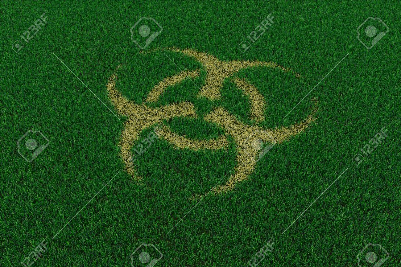 Biohazard symbol from thatch on green grass. 3D render image. Stock Photo - 9387996